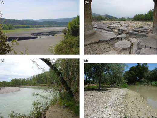 (a) Reservoirs are sediment traps. Barasona Reservoir in R. Esera (Ebro Basin). Over 80% of reservoir capacity has been lost. (b) Armouring river bed (R. Pas). Incision caused by smaller substrate size selective erosion. (c) Lateral bank erosion in meander. R. Gallego. (d) Sediment deposits in lateral banks. R. Guadalete (photograph by D. G. De Jalon, 2015).