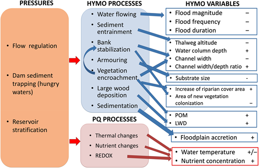 Conceptual framework of large dams and reservoirs effects on HYMO and physico-chemical (PHYCHE) processes and variables (POM = particulate organic matter; LWD = large woody debris) (Source:García de Jalón et al., 2013).