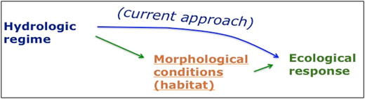 Potential e-Flows actions involving possible modifications of the hydrological regime, sediment transport, or morphological reconstruction (Rinaldi et al., 2015). Note that the current e-Flows approach linking flows directly to ecological response ignores such complex interactions.