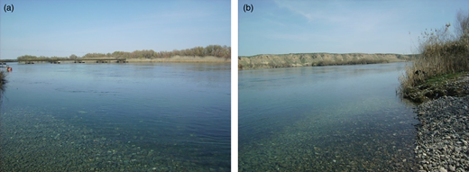 Pictures of the Euphrates River at Jarablus, Syria (border with Turkey), obtained from the same point on the shore. The first (a) is towards upstream and the second (b) is towards downstream (March 2011).