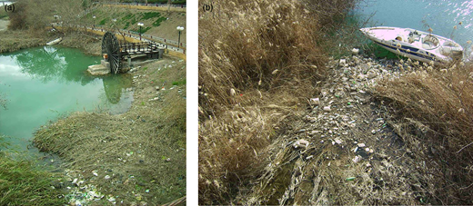Plastic trash accumulated in small backwaters in the city of Deir Ez-Zor. The same point viewed from different angles and dates. (a) January 2010. There is a nora, or hydraulic apparatus, used to withdraw water from the river. (b) February 2011.