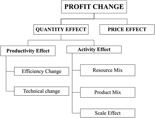 Decomposition of the profit change into its components. Source: Own elaboration based on Grifell-Tatje & Lovell (1999).