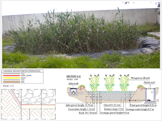 Main part of sanitation implemented system: horizontal constructed wetland and their characteristics (designed by Iridra, Italy).