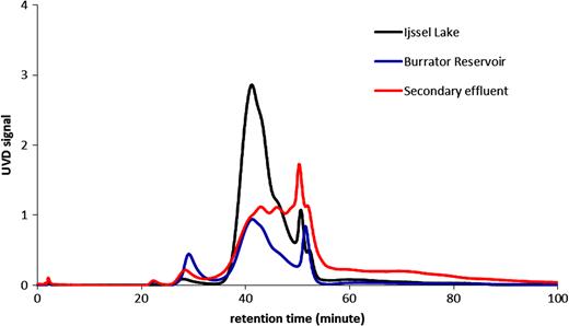 SEC-UVD chromatogram of three samples – Ijssel Lake, Burrator Reservoir, and a secondary effluent.