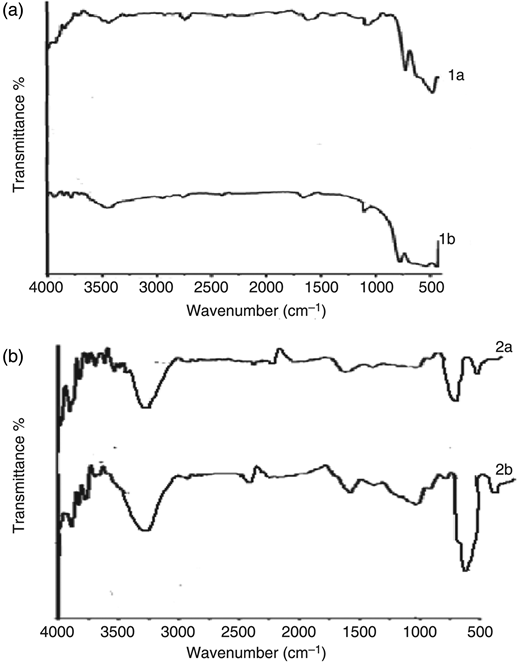 FTIR spectrum showing the traces of coating of PEG and PAA on the surface of the magnetite nanoparticles.