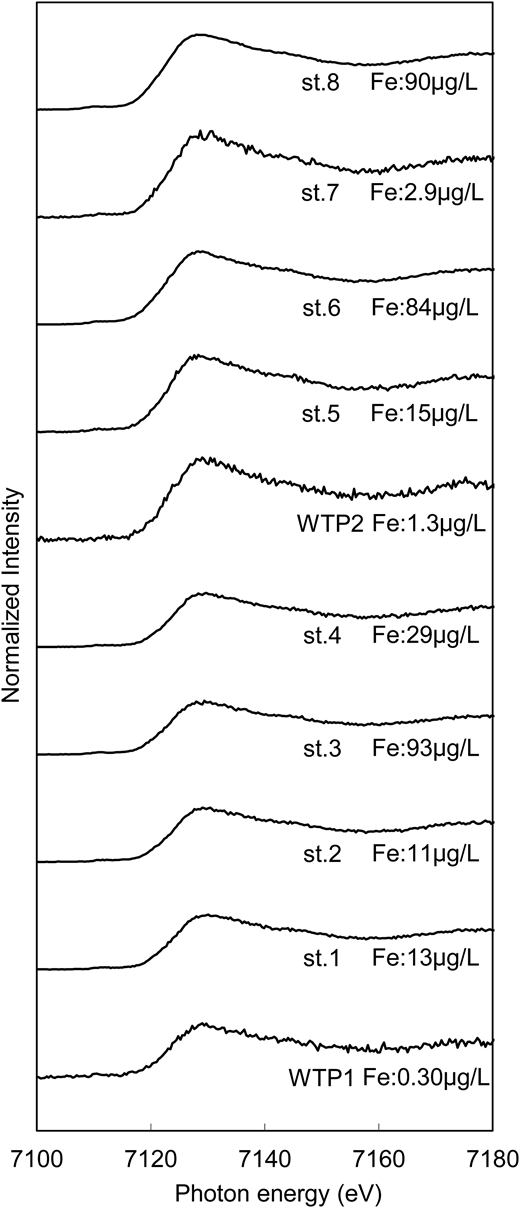 Fe K-edge XAFS spectra and iron concentration of water samples.