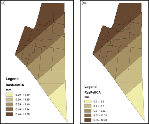 (a) Rainfall raster map; (b) effective rainfall raster map of the selected area.