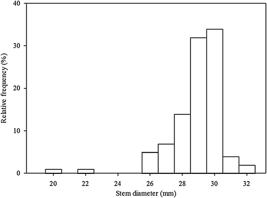 Frequency distribution of the stem diameters of the maize plants (n = 100).