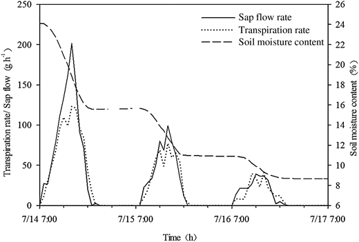 Daily change of the weight loss of potted maize and sap flow as measured with the sap flow gauge from July 14 to 17, 2012.