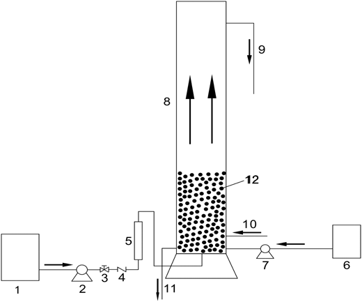 Modelling Particle Growth Of Calcium Carbonate In A Pilot Scale