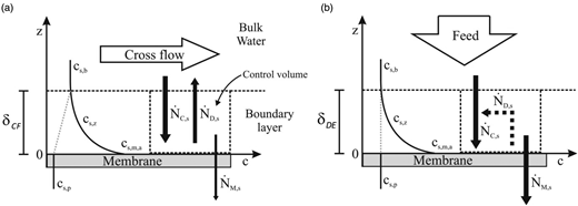 Steady-state concentration polarization in (a) cross-flow and (b) dead-end mode operation.
