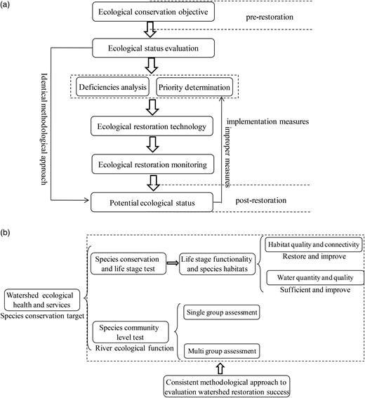 The proceeding chain of river ecological restoration. (a) The systematic structures of the complex procedure. (b) The frame diagram of integrative control behavior for ecosystem restoration measures.