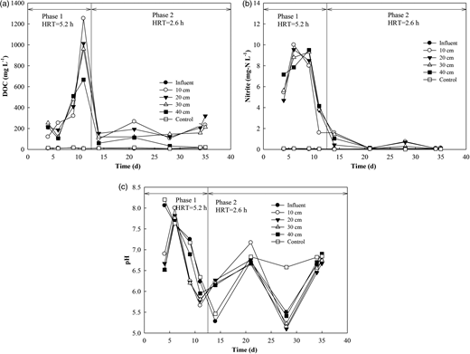 Spatial–temporal variations of nitrite, DOC and pH at the mass ratio of 1:40.