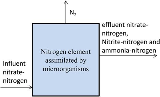 Nitrogen balance in the PRBS.