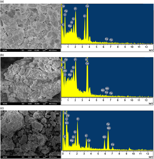 (a) SEM and EDX spectrum of original materials; (b) SEM and EDX spectrum of materials after contact with water; (c) SEM and EDX spectrum of materials after adsorbing total Fe and Mn.