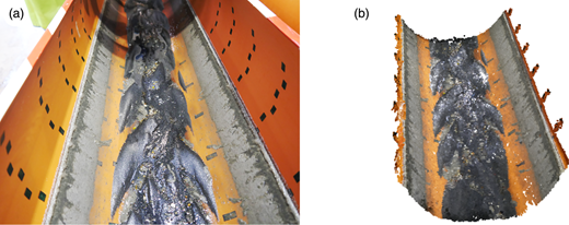 Example of a picture of the accumulated sediments in the pipe contour (a) and view of the 3D reconstructed model (b) of the 315 mm diameter pipe.