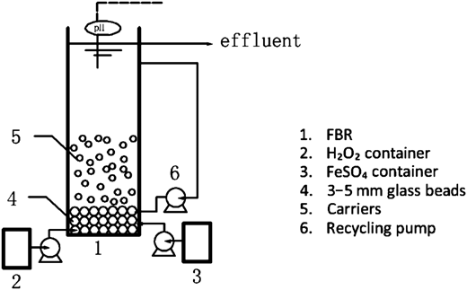 The schematic diagram of a FBR.