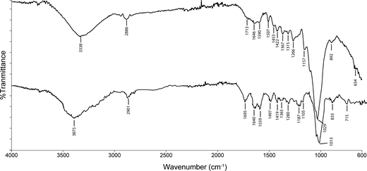 FTIR spectra of sawdust and AY132 adsorbed sawdust.