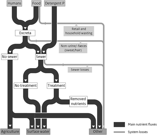 Different pathways of human emissions of N and P from households.