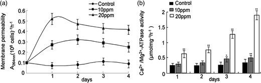 Effects of different concentrations of A. mearnsii extract on (a) membrane permeability and (b) Ca2+/Mg2+-ATPase activity. The error bars are the mean ± standard deviation. The single and double asterisks represent significant difference determined by the Student's t test at p < 0.05, p < 0.01, respectively.