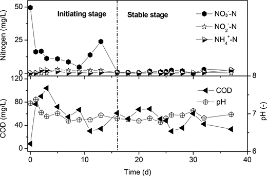 Denitrification performances in continuous experiments with a PLA/starch ratio of 5:5.