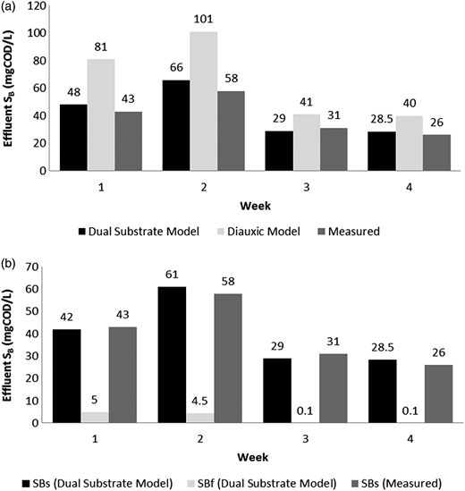 Validation results for the diauxic and dual substrate models. (a) Comparison of the effluent SB concentration from diauxic and dual substrate model, (b) dual substrate model validation for SBF and SBS concentrations.