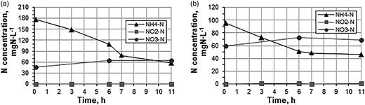 NH4–N, NO2–N and NO3–N concentrations during the nitritation–anammox process at 30 °C with intermittent aeration (9 min aeration and 18 min stirring) at the DO concentration of (a) 1.0 mg O2 L−1; (b) 0.8 mg O2 L−1.