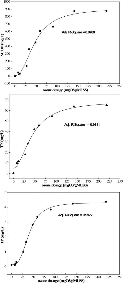 Solubilization of SCOD, TN, TP, carbohydrate and protein during sludge ozonation.