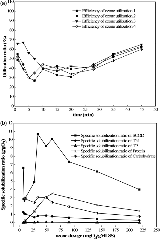 (a) Efficiency of ozone utilization in four parallel experiments. (b) Specific solubilization ratio of SCOD, TN, TP, protein and carbohydrate.