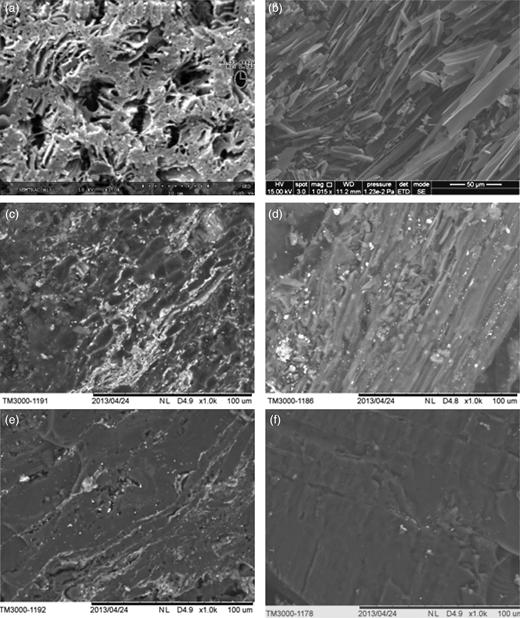 SEM images of the prepared ACs: (a) AC-I; (b) AC-II; (c) AC-III; (d) AC-IV; (e) AC-V; (f) AC-VI.