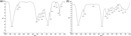 FTIR spectrum of (a) untreated and (b) treated SSDM effluent.