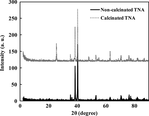 XRD patterns of TNAs before (bottom) and after calcination (top).