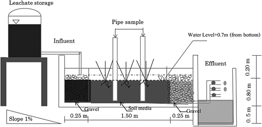 Schematic of pilot-scale permeable reactive barrier (PRB) with vegetation.
