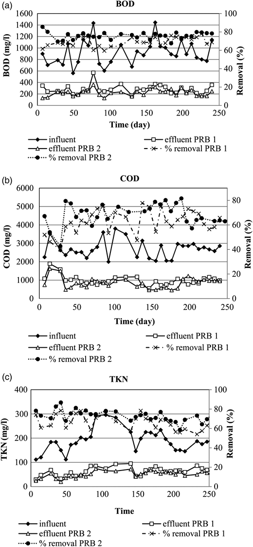 Variation in BOD, COD and TKN concentrations, and their removal efficiencies.