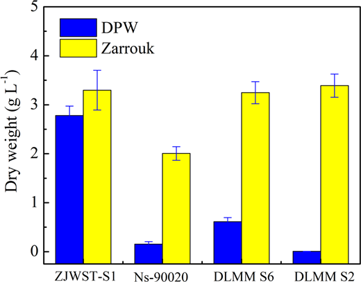 The productivity of different Arthrospira strains in Zarrouk and DPW medium after 9 days' cultivation.