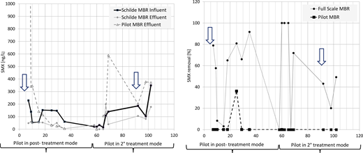 On the y-axis full-scale MBR influent, full-scale MBR effluent, pilot-scale MBR effluent concentrations and removals of SMX. The arrows represent the inoculation of Microbacterium in the pilot MBR waters. On the x-axis, the days of operations. In post-treatment configuration, the pilot MBR receives full-scale permeate. In secondary treatment configuration the pilot MBR receives full-scale influent waters.