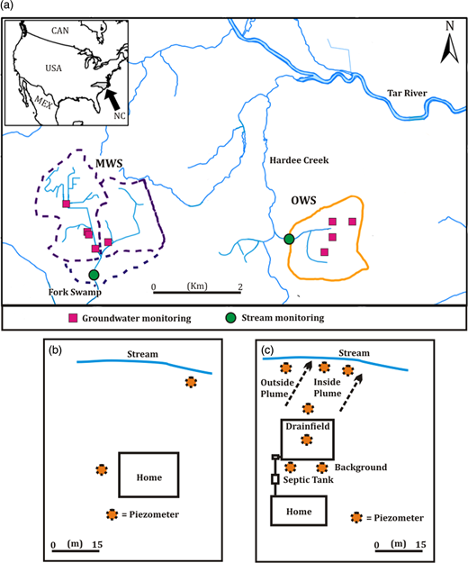 (a) Groundwater and stream monitoring sites in two watersheds within the coastal plain of North Carolina. One watershed was served by onsite wastewater systems (OWS) and the other by a municipal wastewater treatment sewer system (MWS). (b) Two or three piezometers were installed at each of the five MWS sites. (c) Networks of piezometers were installed up-gradient and down-gradient of onsite wastewater systems at four sites.