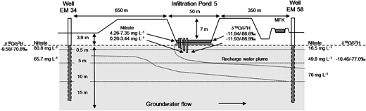 Transect across the infiltration pond following groundwater flow direction. Via water isotope and nitrate values, surface water recharge and mixing of infiltrated water and groundwater is indicated. Isotope values of sediment porewater are mean values from four different depths (0–10, 30–40, 70–80, 110–120 cm).