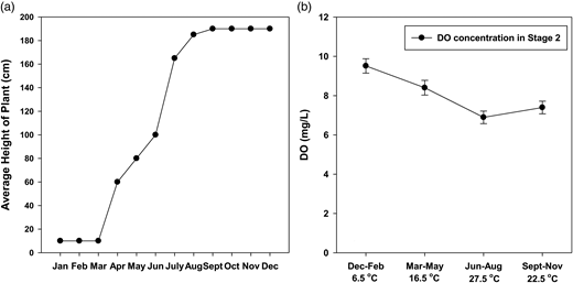 (a) The monthly growth characteristics of the plants (dormant growth during the January–February period, rapid growth during the March–August period, optimum growth during the September–December period). (b) Mean seasonal dissolved oxygen in Stage 2.