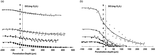 DO profiles performed at different DO concentrations in the bulk liquid (around 8 mg O2/L (◊), 4 mg O2/L (Δ), 2 mg O2/L (●) and 1 mg O2/L (▪)) in (a) granules from SBR-1 and (b) granules from SBR-2.