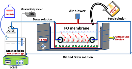 Schematic illustration of the sludge thickening ultrasound/FO system.