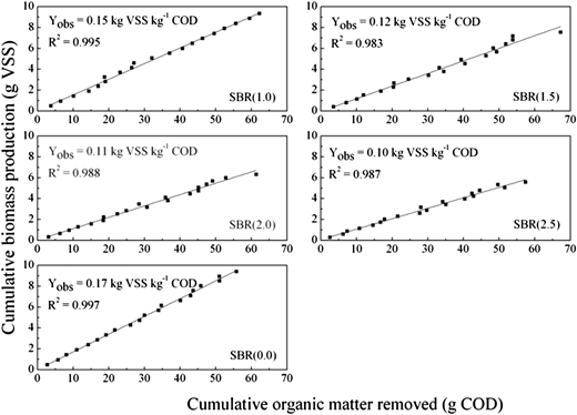 Regression lines obtained from produced biomass and consumed COD from SBR(0.0), SBR(1.0), SBR(1.5), SBR(2.0) and SBR(2.5).