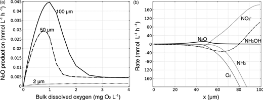 (a) N2O production rates for AOB biofilms of different thicknesses with a constant biofilm surface area, per unit reactor volume, as a function of bulk O2, and (b) net component rates over the biofilm depth (x) for the 100-μm biofilm. Results are for the base case conditions at a bulk O2 of 0.9 mg L−1.