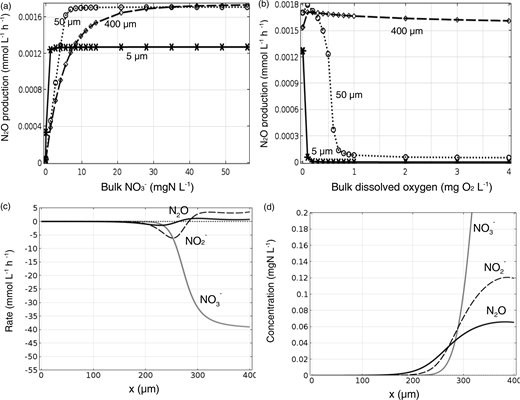 N2O production rates for denitrifying biofilms of different thicknesses with a constant biofilm surface area, per unit reactor volume and time, as a function of bulk NO3− (a) and bulk O2 (b). Net component rates over the biofilm depth (x). Results are for the base case conditions with anoxic bulk conditions (net rates of component formation or consumption) (c) and biofilm N-species concentration within biofilm depth (d). Results in (c) and (d) are for the base case conditions with a 400 μm biofilm in the presence of anoxic bulk.