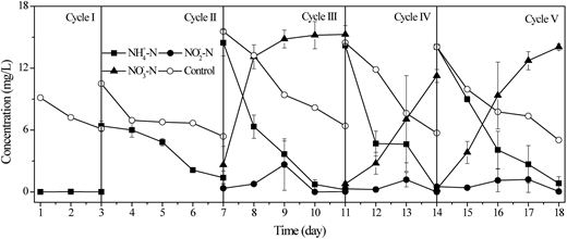 Changes of nitrogen compounds in five cycles by the activated sludge. Control: real river water without any amendment.