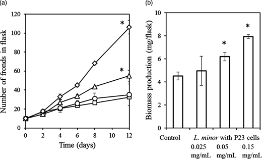 Effects of P23 on the growth of L. minor in non-sterile pond water for 12 days. (a) Changes in the number of fronds growing with P23 cells at densities of 0 (□, control), 0.025 (○), 0.05 (Δ), or 0.15 (◇) mg dry weight/mL. (b) Biomass production (final minus initial dry weight) of L. minor in pond water with P23 cell densities of 0 (control), 0.025, 0.05, or 0.15 mg dry weight/mL during 12 days. Values are mean ± SD (n = 3). *Significant difference (P < 0.05) from control.