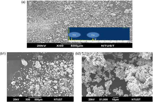 SEM and EDS of particles from different precursors after NO3− reduction: (a) CuSO4; (b) CuO ([NO3−]0 = 677 mg-N/L, [Cu0] = 0.254 g/L, [NaBH4] = 4.16 g/L, pHin = 6.8, T = 60 °C).