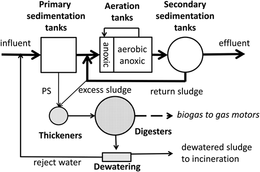1-stage AS plant with PS and sludge digestion.