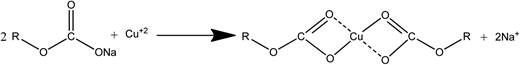 The reaction mechanism between the carboxylate group of sorghum and Cu2+ ions (Dong et al. 2013).