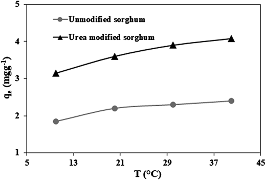 Effect of temperature of the medium on maximum adsorption capacity (qe) of sorghum and urea-modified sorghum biomass for removal of Cr3+ ions (conditions: concentration of Cr3+ ions = 50mg/L, time = 30 min and amount of unmodified sorghum = 0.7g/50mL and urea-modified sorghum = 0.5g/50mL) (Salman et al. 2013a).